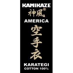 Karategi Kamikaze America